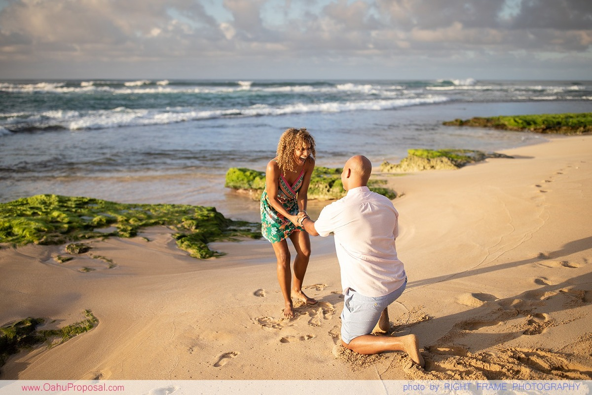 Hawaii Proposal Photographer Oahu Photoshoot